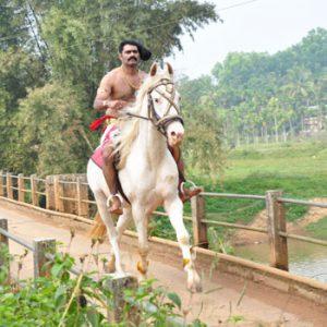 horseback riding near me