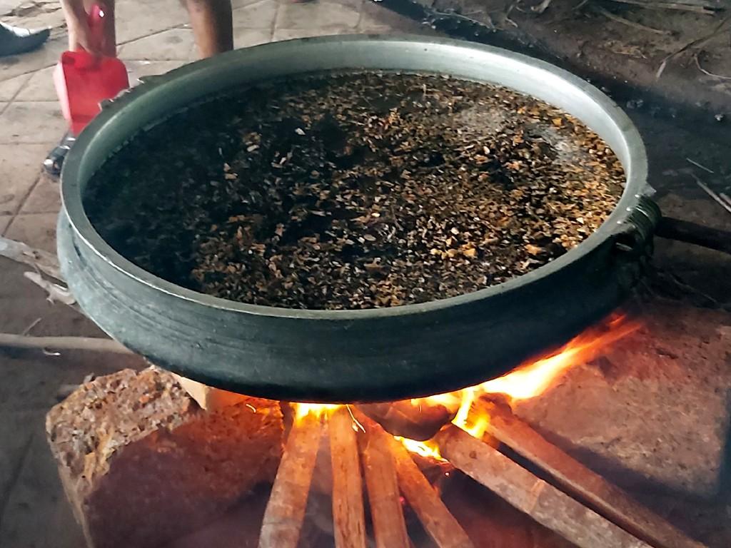 Kalaripayattu herbal oil